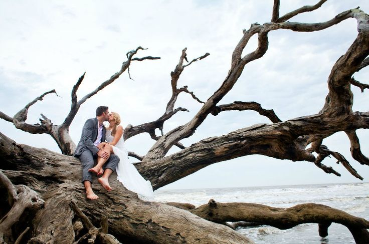 take your wedding portraits on large pieces of driftwood and branches on the beach to embrace to location