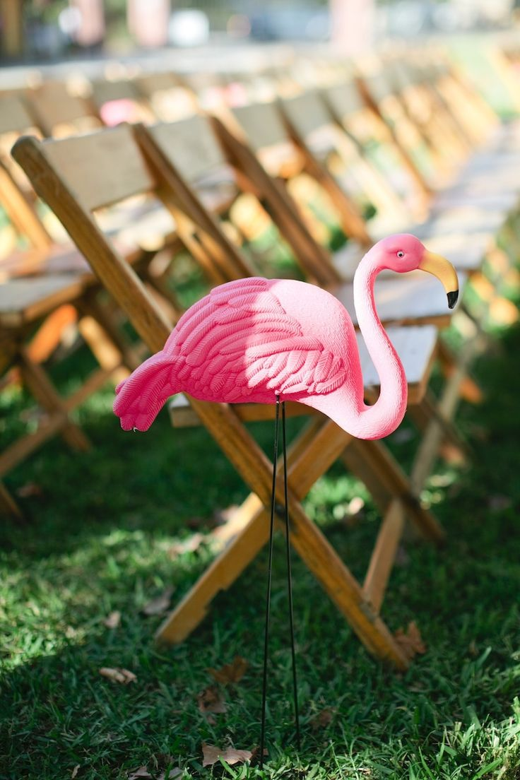Picture Of whimsy and cheerful flamingo wedding theme ideas  21